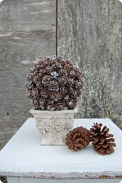Pinecone Topiary 3