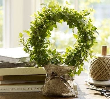 Circle Of Ivy Topiary Knockoffdecor Com