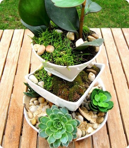 Tiered Succulents Planter