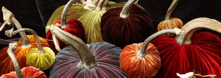 hot skwash velvet pumpkin
