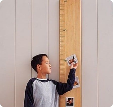 pottery barn ruler growth chart