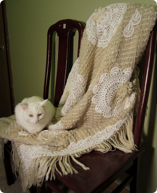 Doily and Lacy Throw 2