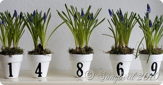 painted pots with numbers