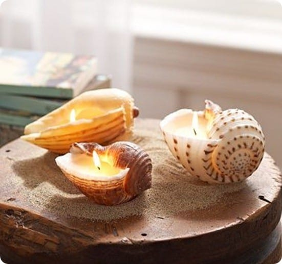 pb shell candles