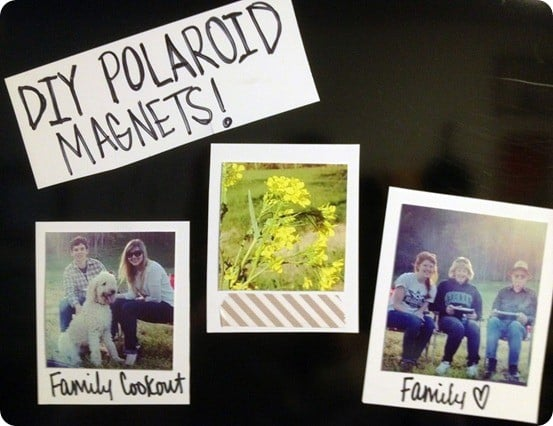 polaroid magnets