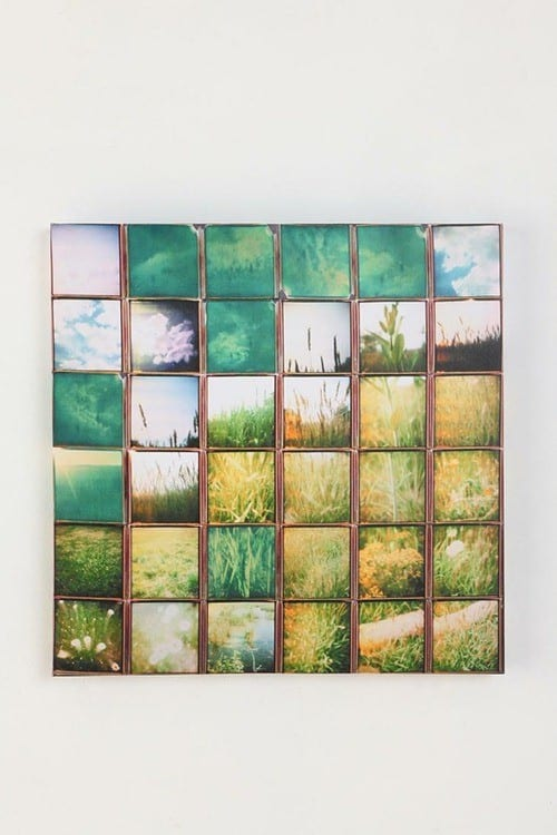 urban_outfitters_nature_mosaic