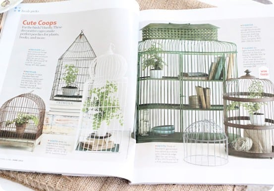 country living decorative birdcages