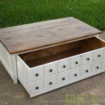 apothecary-coffee-table-open