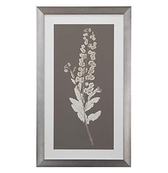 zgallerie nature study prints