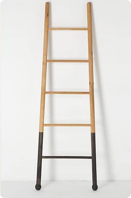 anthro submergent ladder