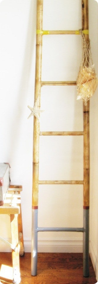 paint dipped ladder