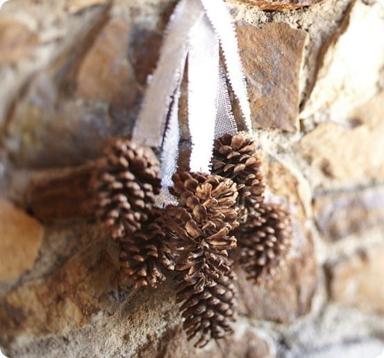 pottery barn pinecone cluster