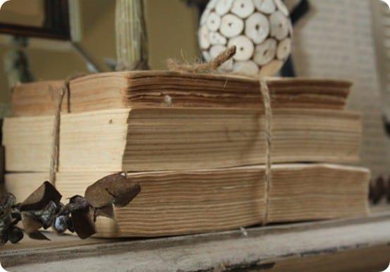 decorative book bundles
