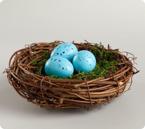 mossy robins egg nest