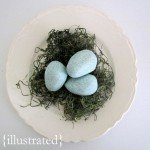salt-dough-robins-eggs.jpg