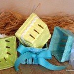 upcycled-berry-cartons.jpg
