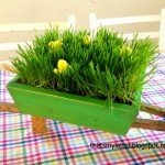 Mini Wheelbarrow Centerpiece