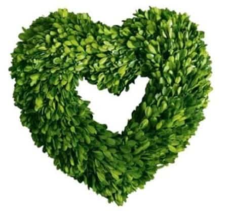 Preserved Boxwood Wreath Heart