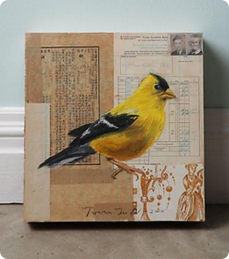 Yellow Bird by Tom Judd