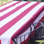 painted-stripe-tablecloth.jpg