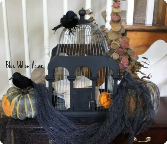 halloween bird cage decor