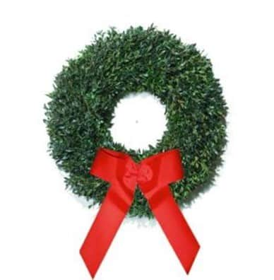 The Christmas Tree Company 30 in. Fresh Distinctive Boxwood Holiday Wreath