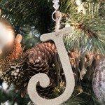 glitter-letter-ornaments.jpg
