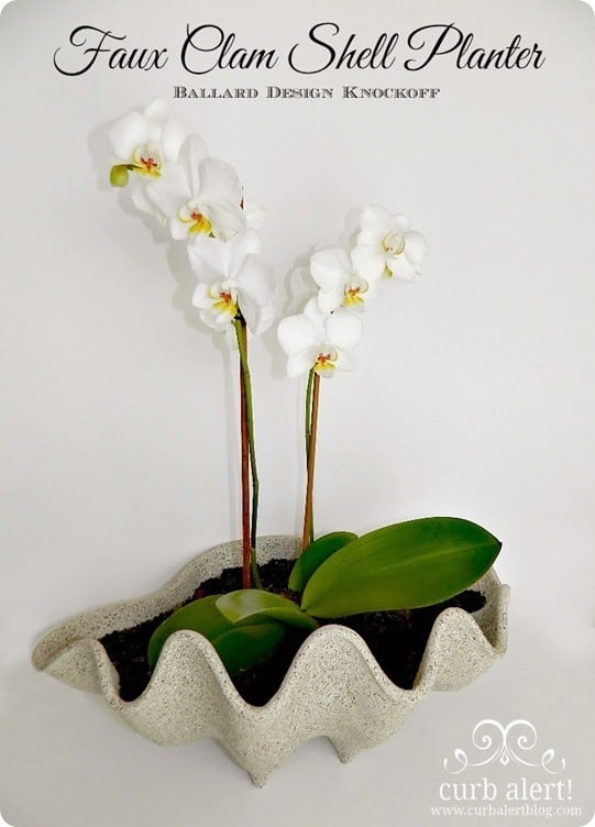 Faux Clam Shell Planter Pin