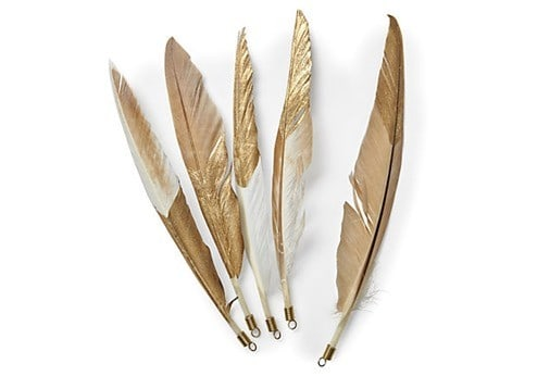 duck pointer gold feathers