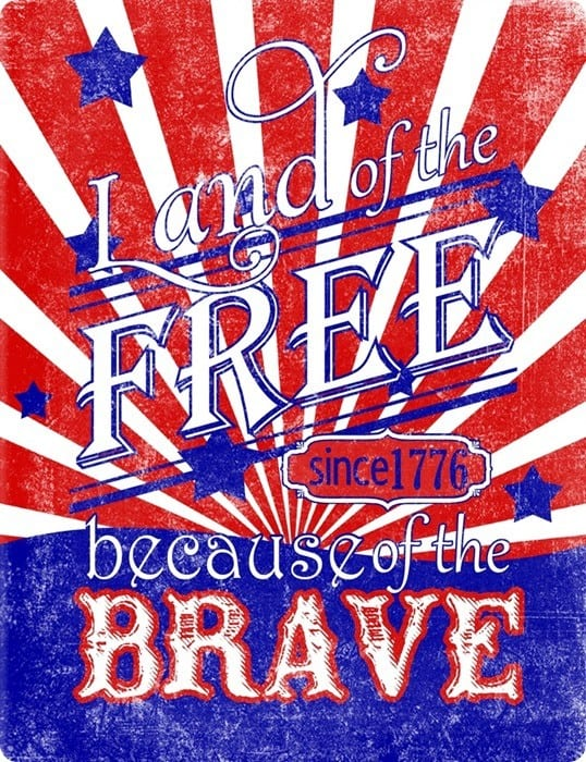 land of the free beccause of the brave