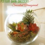 Pottery-Barn-Knock-Off-Succulent-Arrangement