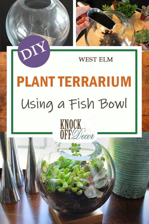 Succulent Terrarium Using a Fishbowl