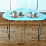 Mod Pet Food Stand with Hairpin Legs