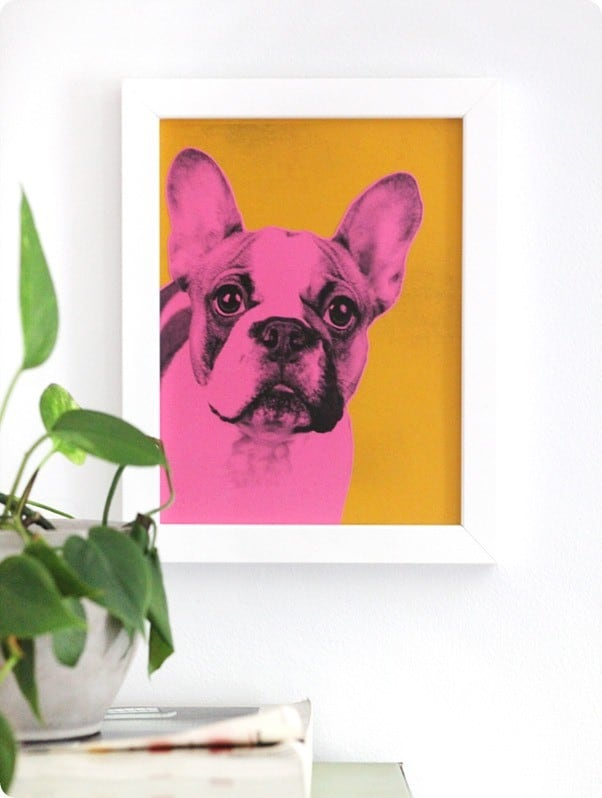 diy pet pop art