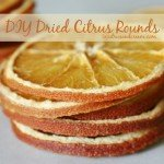 Dried Citrus Round Décor