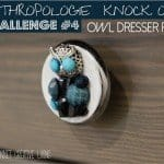 anthropologie-knock-off-owl-drawer-pull