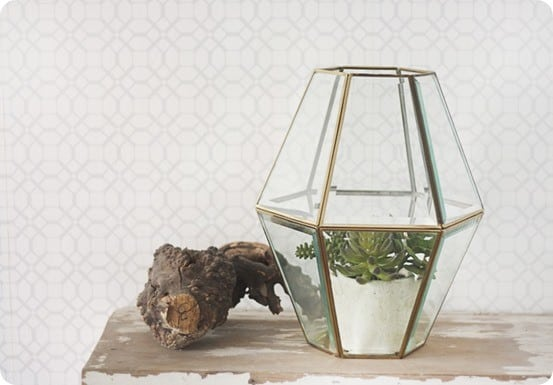 diy terrarium from old light fixture