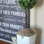 DIY Boxwood Topiaries for $5
