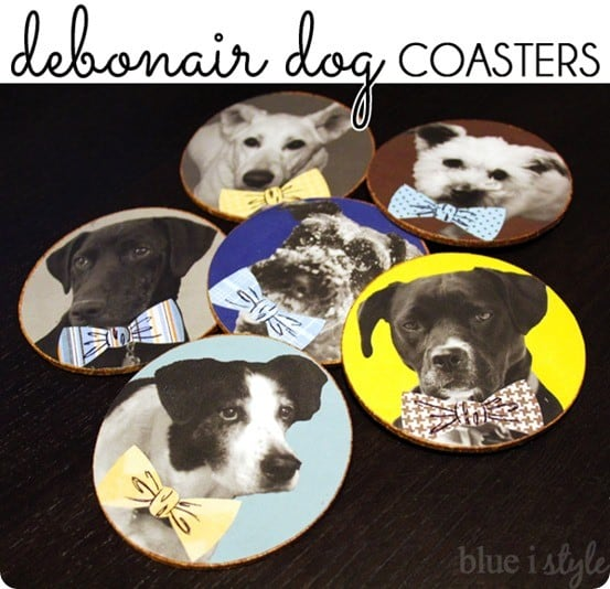 DIY Crafts Dog Coasters