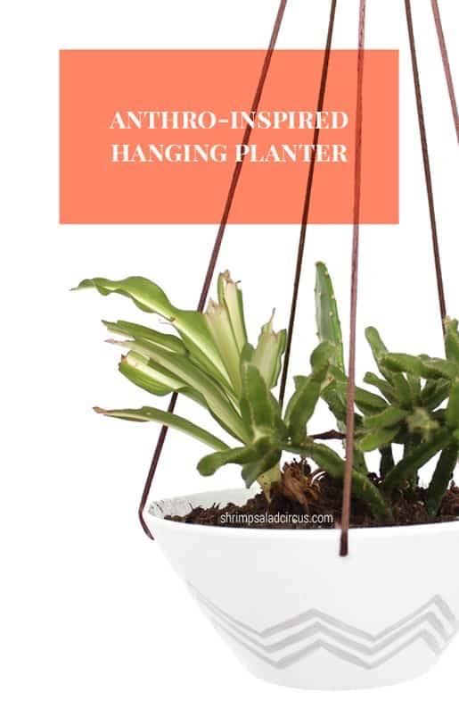 Anthropologie Hanging Planter Knockoff