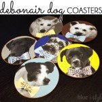 DIY Custom Dog Coaster Set