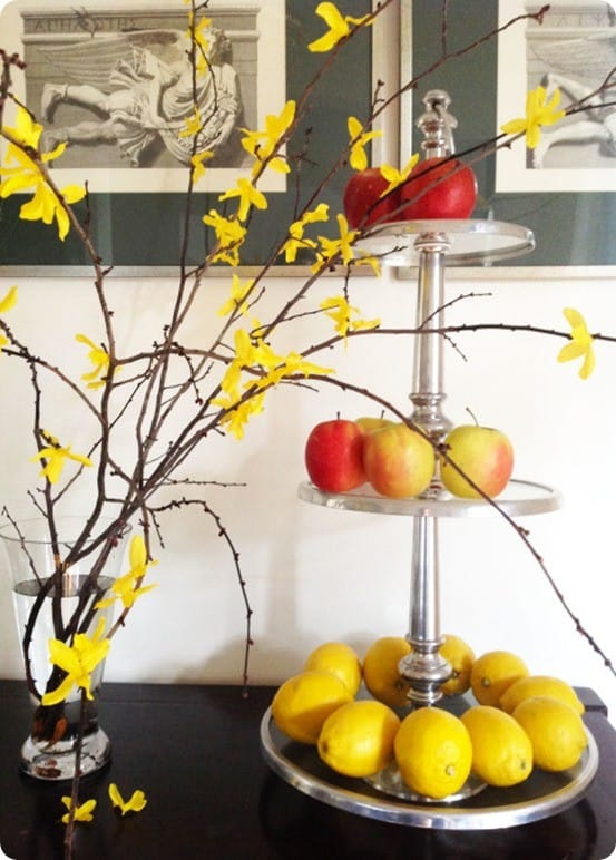 Semi Faux Forsythia Branches
