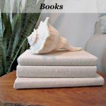 Drop Cloth Fabric Covered Books