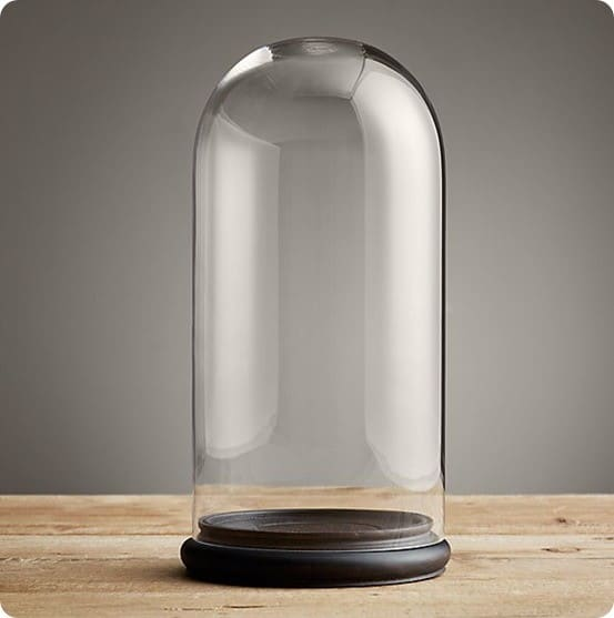 Petite Glass Cloche from Restoration Hardware