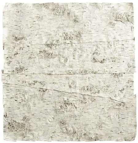 Faux Birch Bark Placemat from Pier 1