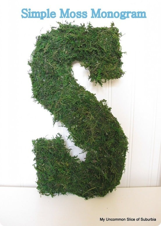 DIY Spring Crafts ~ Knock off Pottery Barn's Live Moss Letters for only $6!