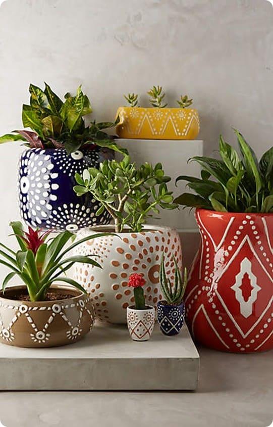 Leta Garden Pots from Anthropologie