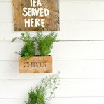 Hanging Herb Crates for the Beginning Woodworker