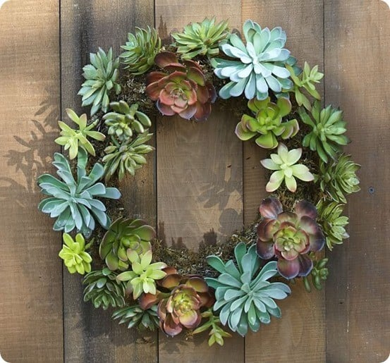 Faux Succulent Wreath from Pottery Barn