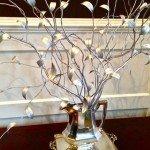Silver Leaf Tree